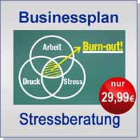 Businessplan Stressberater